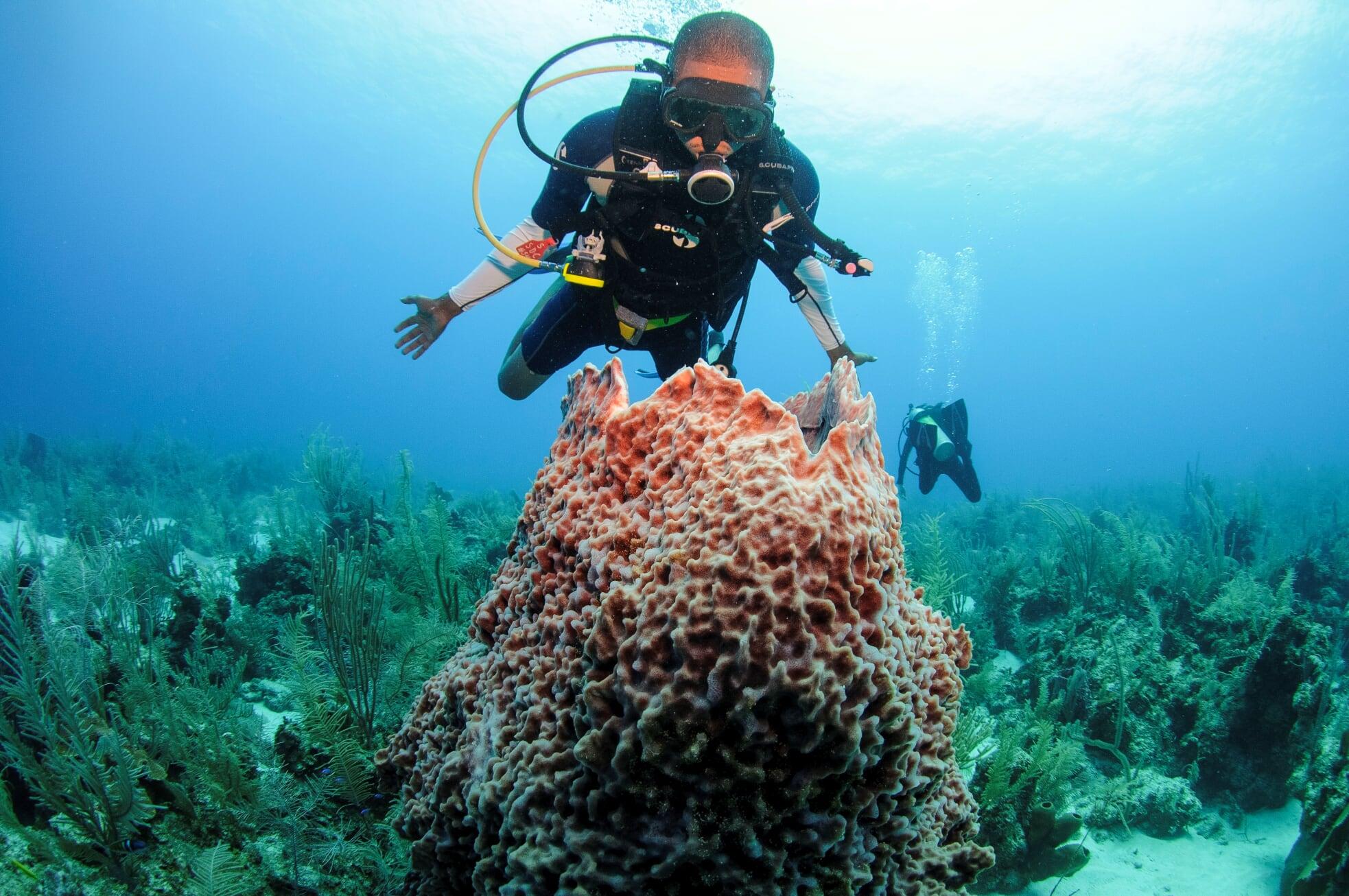 Rondreis Belize Caye Caulker Duiken
