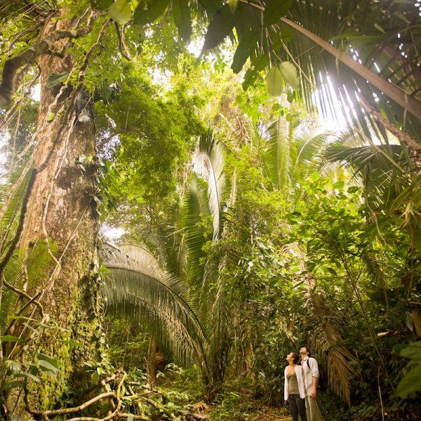 Bezoek het prachtige Mayflower Bocawina National Park in Belize