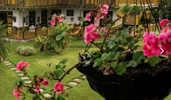 Colombia quindio finca hotel el palmar